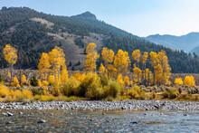 United States, Idaho,Sun Valley, Big Lost River In Autumn Landscape With Mountains And Forests