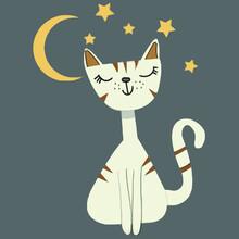 Night Cat Moon And Stars Sport Illustrator Vector Poster Design
