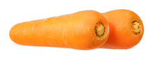 Fresh Carrot Isolated On White With Clipping Path