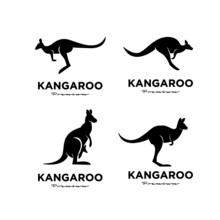 Set Collection Kangaroo Wallaby Logo Vector Icon Premium Illustration