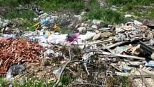 Rubbish In The Green Grass