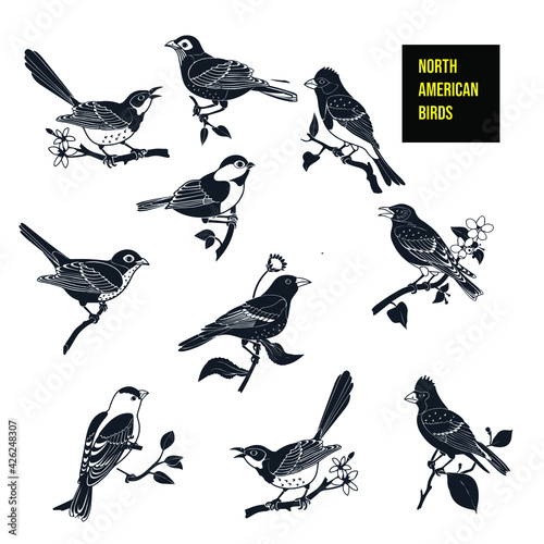 Canvas Print North American birds icon - stock illustration