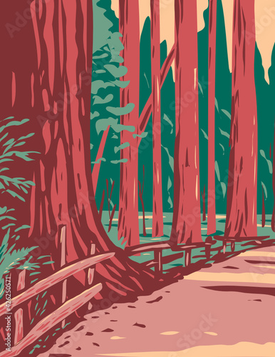 WPA Poster Art of redwoods in the Avenue of the Giants surrounded by the Humboldt Redwoods State Park located in Arcata California done in works project administration style.
