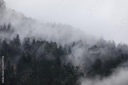 Photo Ein Berghang wird von Neben durchzogen