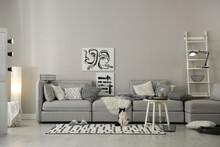 Cat Near Big Grey Sofa In Living Room. Interior Design