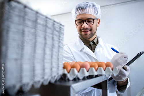 Obraz Food factory technologist controlling food and eggs production at the farm. - fototapety do salonu