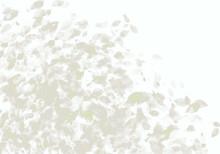 一陣の風、舞い散る葉、ノスタルジックな白い嵐 背景イラスト