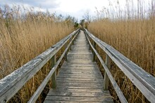 Boardwalk In Corolla On Outer Banks Of North Carolina USA