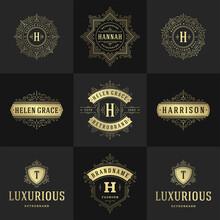 Vintage Logos And Monograms Set Elegant Flourishes Line Art Graceful Ornaments Victorian Style Vector Template Design