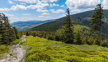 Long Mountain Trail With Panorama If Karkonosze Giant Mountains Around
