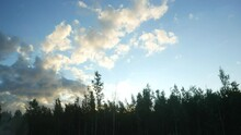 Bright Fluffy Clouds At Blue Sky Car Ride At Wood Margin Look Up To Dark Tops