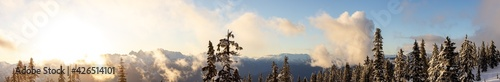 Fototapeta Panoramic View of Canadian Nature Landscape on top of snow covered mountain and green trees during spring sunset. Elfin Lake in Squamish, North of Vancouver, British Columbia, Canada. obraz