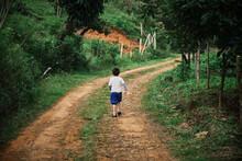 Niño Caminando Por El Campo