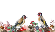 Autumn Floral Seamless Border. Two Goldfinch Birds On Endless Flower Decoration. Harvest Seasonal Seamless Border. Wild Forest Finch Birds. Rustic Decor With Red Berries, Acorn And Blackberries