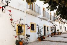 View Of Palm Tree And White Building Against Blue Sky At The Old Town Of Ibiza, Spain. Travel, Mediterranean And Vacation Concept. Ibiza Old Town Streets.