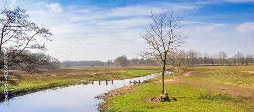 Fotografie, Obraz Panorama of the river Drentse Aa in the nature reserve of Oudemolen, Netherlands