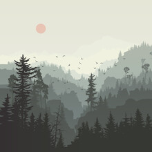 Square Illustration Of Misty Coniferous Forest Hills With Canyons And Flock Of Birds.
