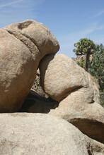 Rock Formations In Joshua Tree National Park California