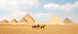 Panoramic view of Great Egyptian pyramids in Giza and three riders in front of them