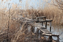 An Old Wretched Fishing Bridge. Spring Photo.