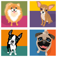 Cartoon Caricatures Of 4 Dog Breeds. Pomeranian, Chihuahua, Boston Terrier, Pug. For Posters, Cards, Banners, T-shirts, Social Media. Vector Illustration.