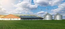 Modern Dairy Farm Using Renewable Energy, Solar Panels And Wind Turbines