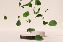 Natural Organic Elements For Object Product Presentation. Wood Slab Podiums And Falling Leaves. 3d Rendering