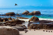 Sandbank With Large Rocks
