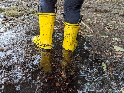 Fotografiet yellow rain boots in flooded marsh