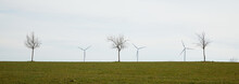 Three Wind Turbines From The Frog's Perspective. Withered Trees Stand In The Picture Middle Ground. Three Wind Turbines From The Frog's Perspective. Withered Trees Stand In The Picture Middle Ground.