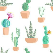 Succulents Seamless Pattern.