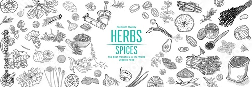 Fototapeta Herbs and Spices. Hand drawn vector illustration set. Top view frame. Engraved design. Spice and herbs black and white design. Card design. obraz