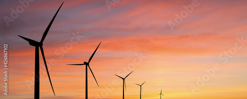 Fototapeta Wind turbines at sunset obraz