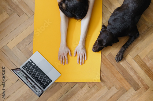 Fototapeta European caucasian woman does yoga and meditation in her home, home calming yoga on a yellow mat. woman prepares for yoga class online with a laptop, talking mat and doing stretching, millennial woman obraz na płótnie