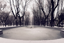Close Up Frozen Fountain In A Park Surrounded By Trees While Snow Is Falling