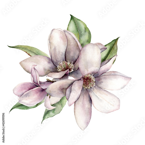 Fototapeta Watercolor floral bouquet of magnolias, leaves and buds. Hand painted flowers isolated on white background. Holiday spring illustration for design, print, fabric or background. obraz