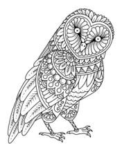 Owl Mandala Decorative Design. Coloring Page, Tattoo Design, Print Design