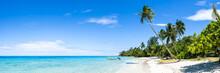 Tropical Beach Panorama With Palm Tree