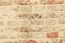 Background Old Brick Rusty Wall
