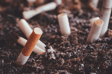 Many Cigarette Butts Were Left In An Ashtray And Filled With Cigarette Ash. Large Number Of Smoking Is Harmful To One's Health And Others.