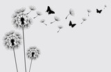 Fototapeta Dmuchawce - Dandelion with flying butterflies and seeds, vector illustration. Vector isolated decoration element from scattered silhouettes