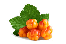 Several Cloudberries With A Leaf Isolated On A White Background With Clipping Path With And Without Shadow