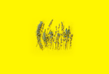 Bouquet Of Dry Purple Fragrant Lavender On  Yellow  Paper Background. Great For Greeting-card.