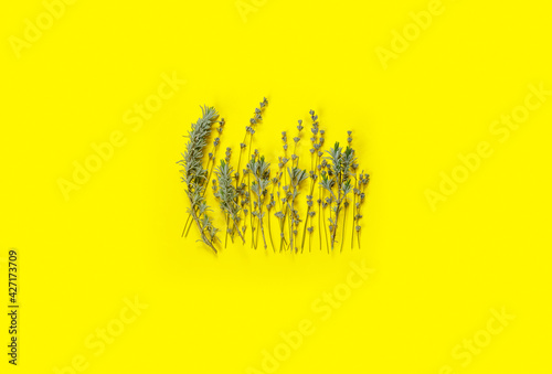 Fototapeta Bouquet of dry purple fragrant lavender on  yellow  paper background. Great for greeting-card. obraz