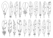 Feather Of Bird Outline Vector Set Illustration Of Icon.Feather Pattern Vector Set Of Icon.Set Illustration Pen Of Bird On White Background.