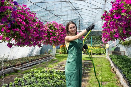 Fotografie, Obraz portrait of handsome woman gardener watering plants and flowers in greenhouse