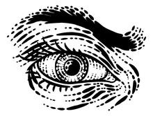 Eye Vintage Woodcut Engraved Drawing