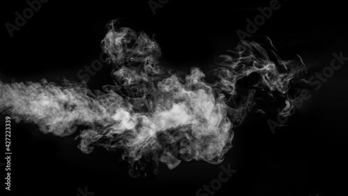 Fotografie, Obraz Horizontal banner with steam or smoke in the form of a mystical creature in the