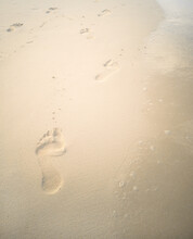 Footprints On Wet Sand Along The Water