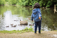 Cute Little Child Feeding Ducks In The Pond In A Park